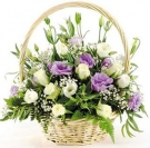 Eustoma - Tenderness and Luxury