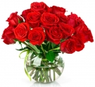Red roses Short stem, 20-24 inch