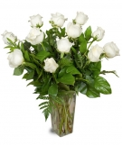 White Short Stem Roses