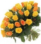 Yellow and Orange 20-24 inch stems