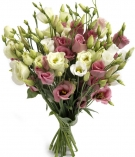 Eustoma pink bouquet