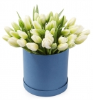 White Tulips at the Hat Box
