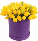 Yellow Tulips ....... At the Hat Box