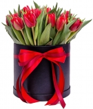 Red Tulips at the Hat Box