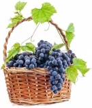 Grapes Basket ........  (choose the size)