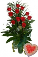 11 Red Roses  and the Gift Box