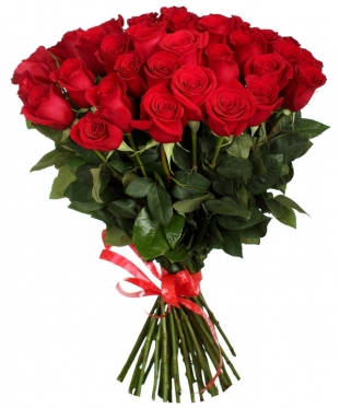 Elite Long Stem Red Roses