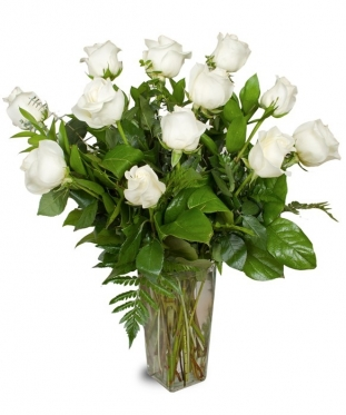 White Roses Short Stem, 20-24 inch