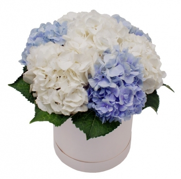 7 Hydrangea Bouquet at the Hat Box