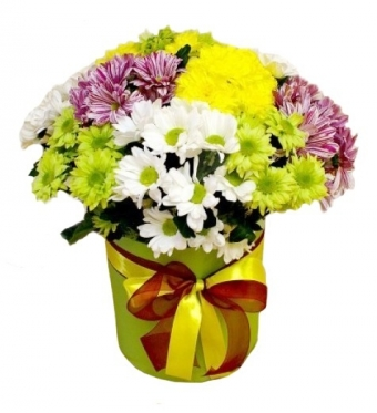 The 15 Bright Chrysanthemums mix