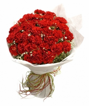Red Carnations Magic