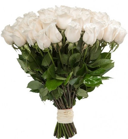 The White Long Stem Roses Bouquets Delivery To All Destinations Of