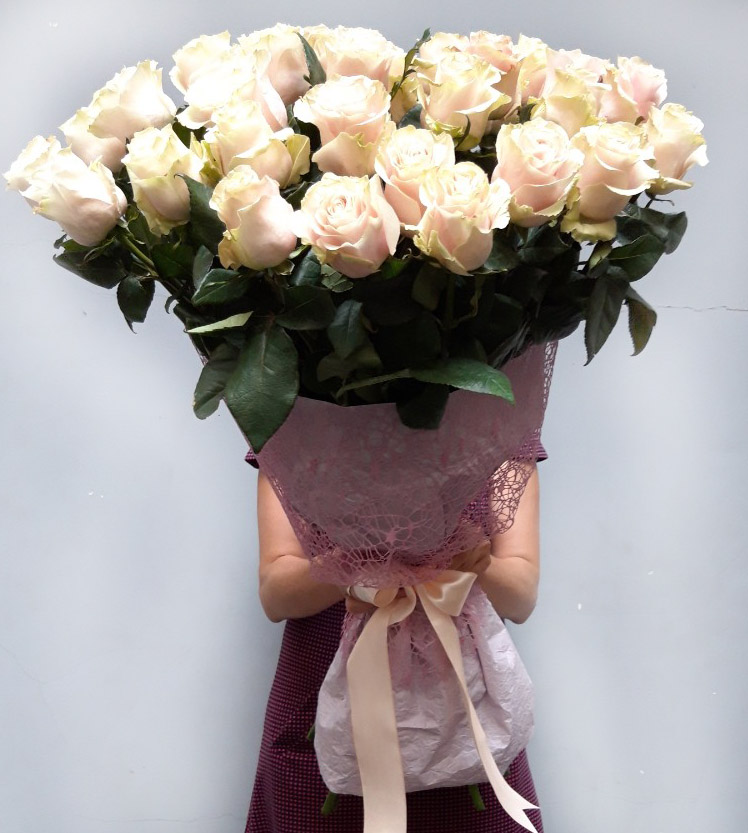 Elite Long Stem Pink Roses image 0