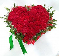 Carnations Heart image 0